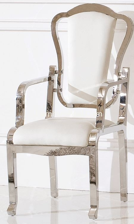 Roxer Chair Stainless Furniture Apartement
